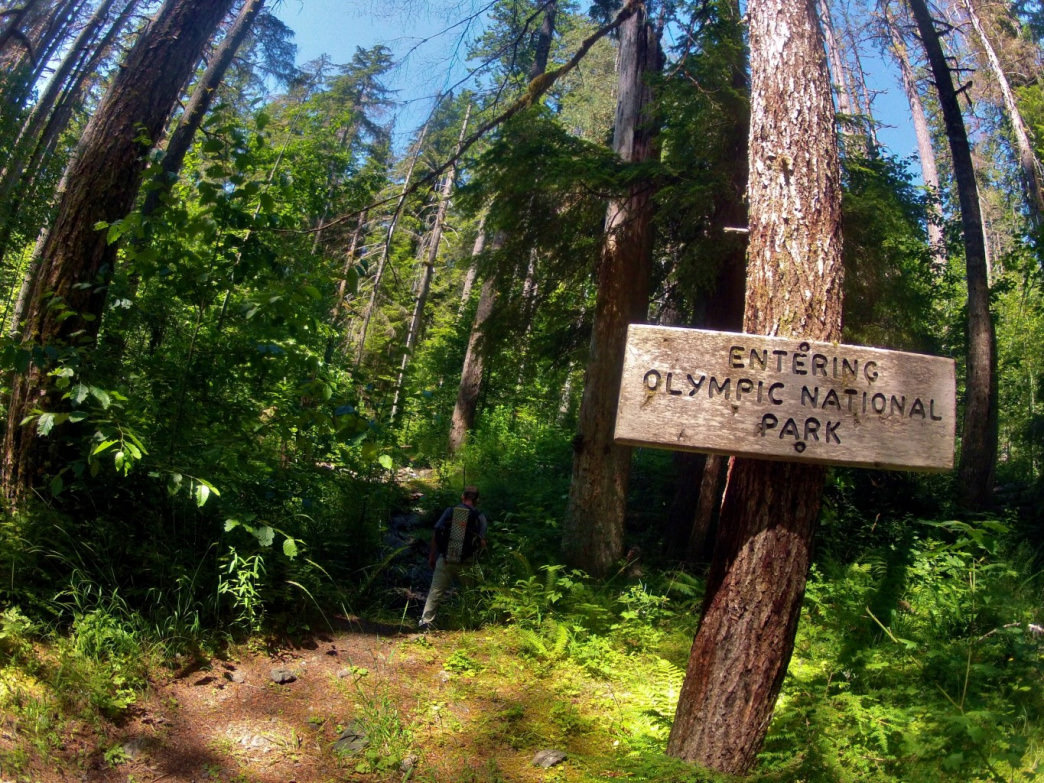 Entering Olympic National Park along the Duckabush River