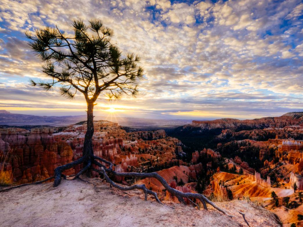 Sunset in Bryce Canyon National Park, Utah.