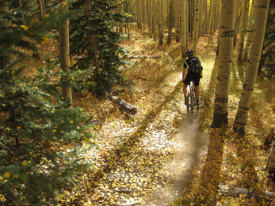 Max Cooper skids through the aspens on a fall ride.