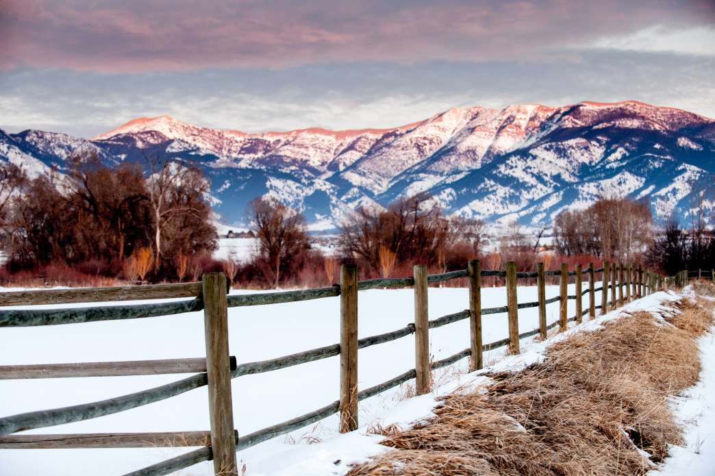 The Can't-Miss Experiences in Bozeman to Live Like a Local