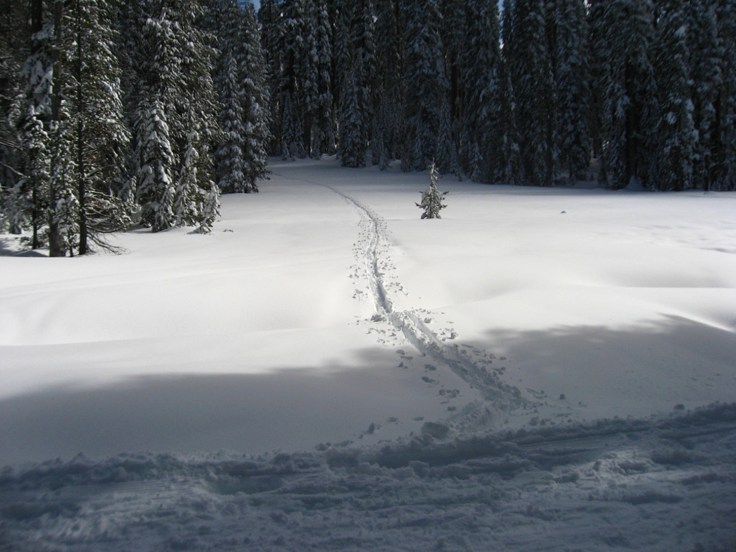 You just may be able to enjoy the slopes in solitude at Badger Pass.