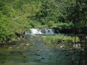Image for Waterfall Glen Forest Preserve - Running