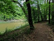 20170609_Tennessee_Chattanooga_Audubon Acres_Hiking5