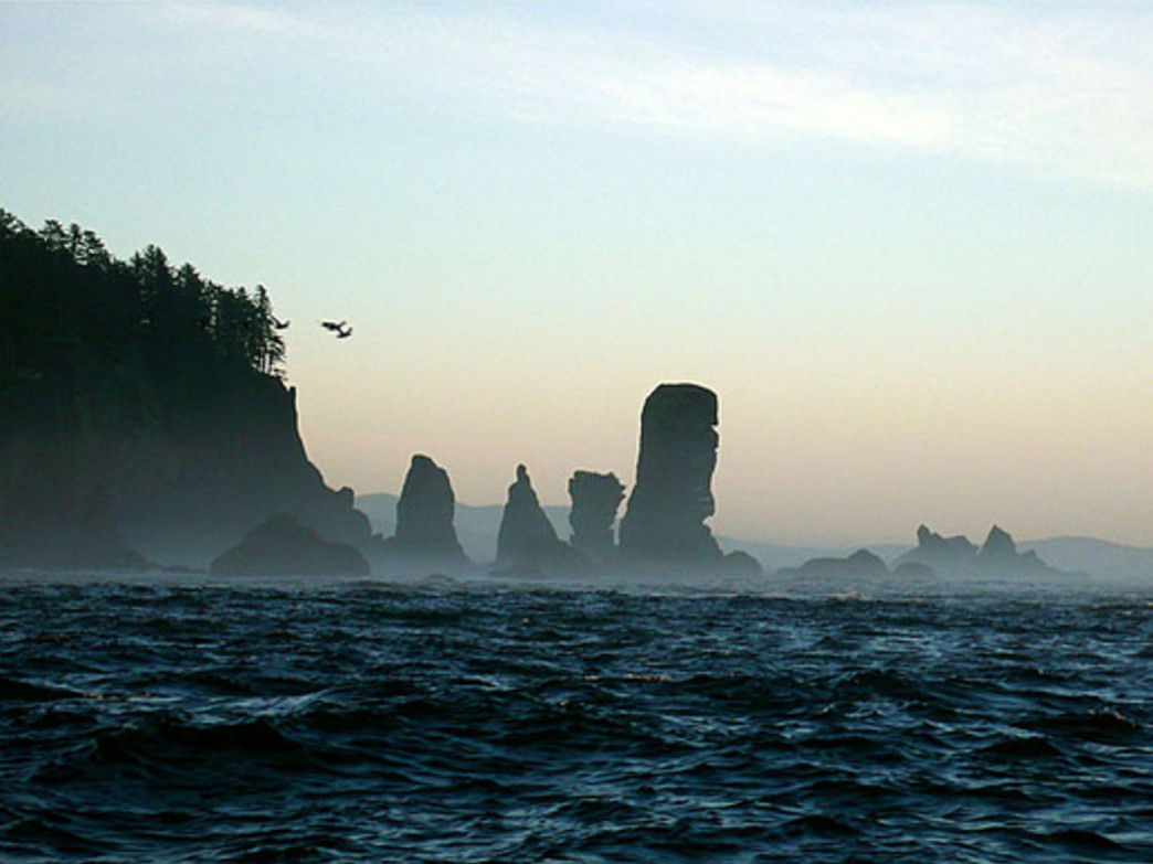 Just one highlight of the Ozette: the seastacks off Cape Alava.