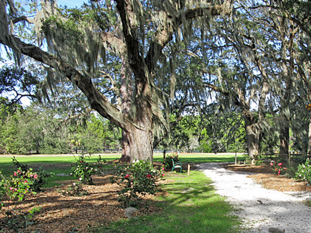 Trails at the Coastal Discovery Museum grounds on Honey Horn Plantation