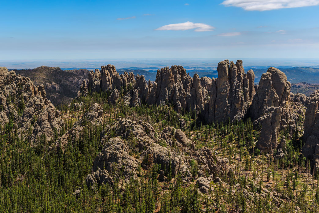 South Dakota's Black Hills.