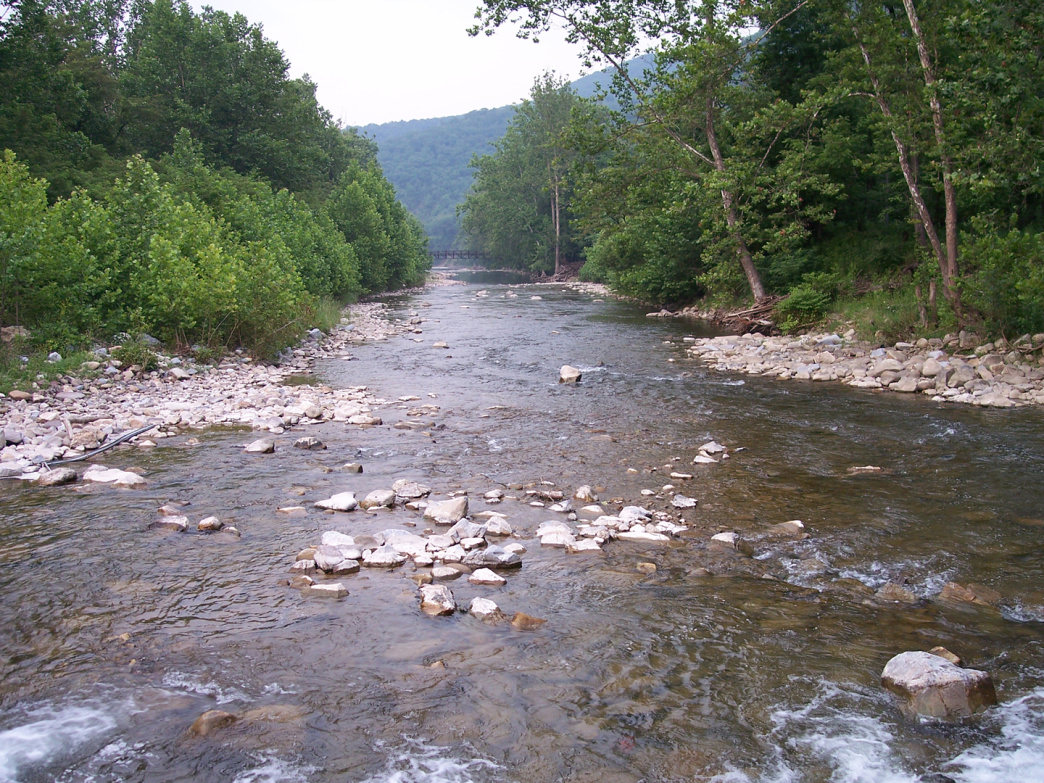 The North Fork South Branch Potomac River offers great fishing opportunities.