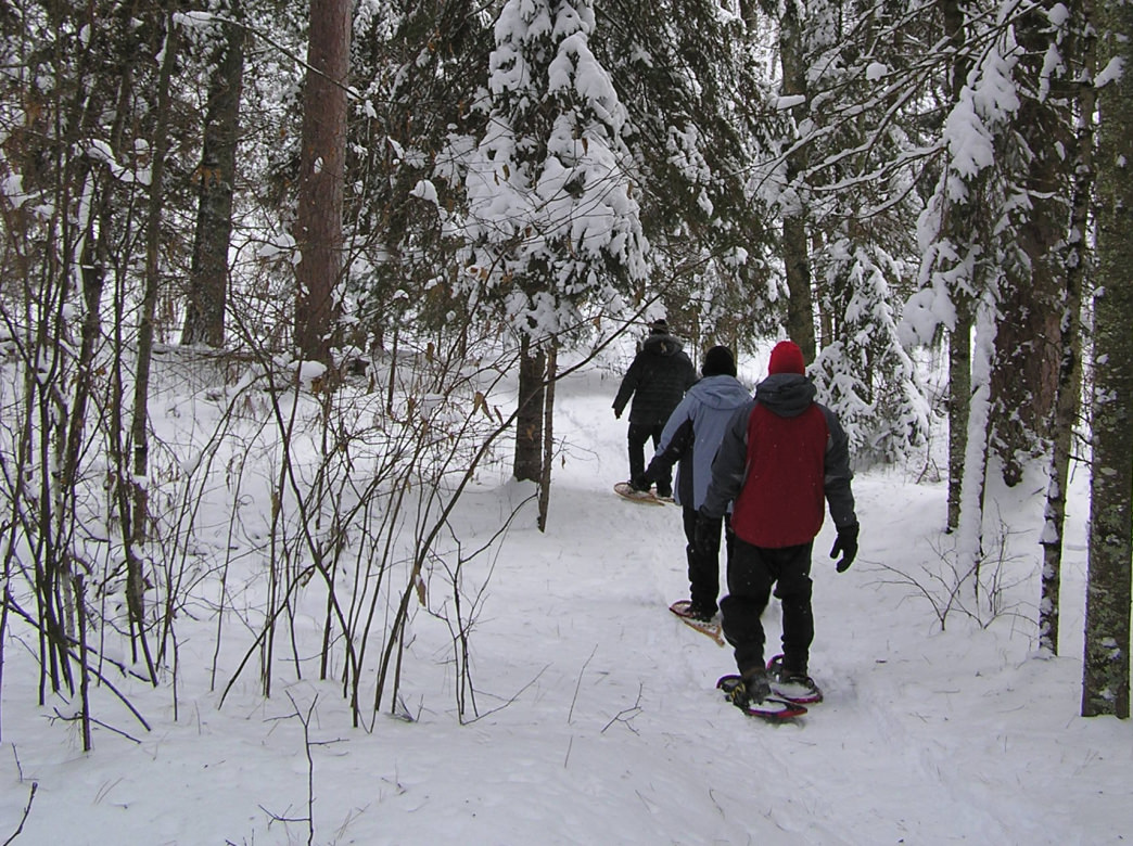 The Itasca State Park features 32,000 acres and more than 100 lakes on the property.