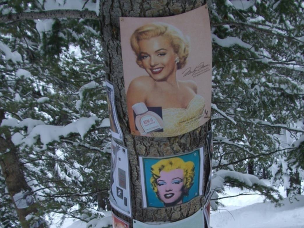 Pictures included in the Marilyn Monroe shrine