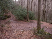 Image for Indian Flats Hike