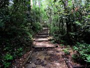 20170705_Cherokee National Forest - Benton Falls_Hiking7