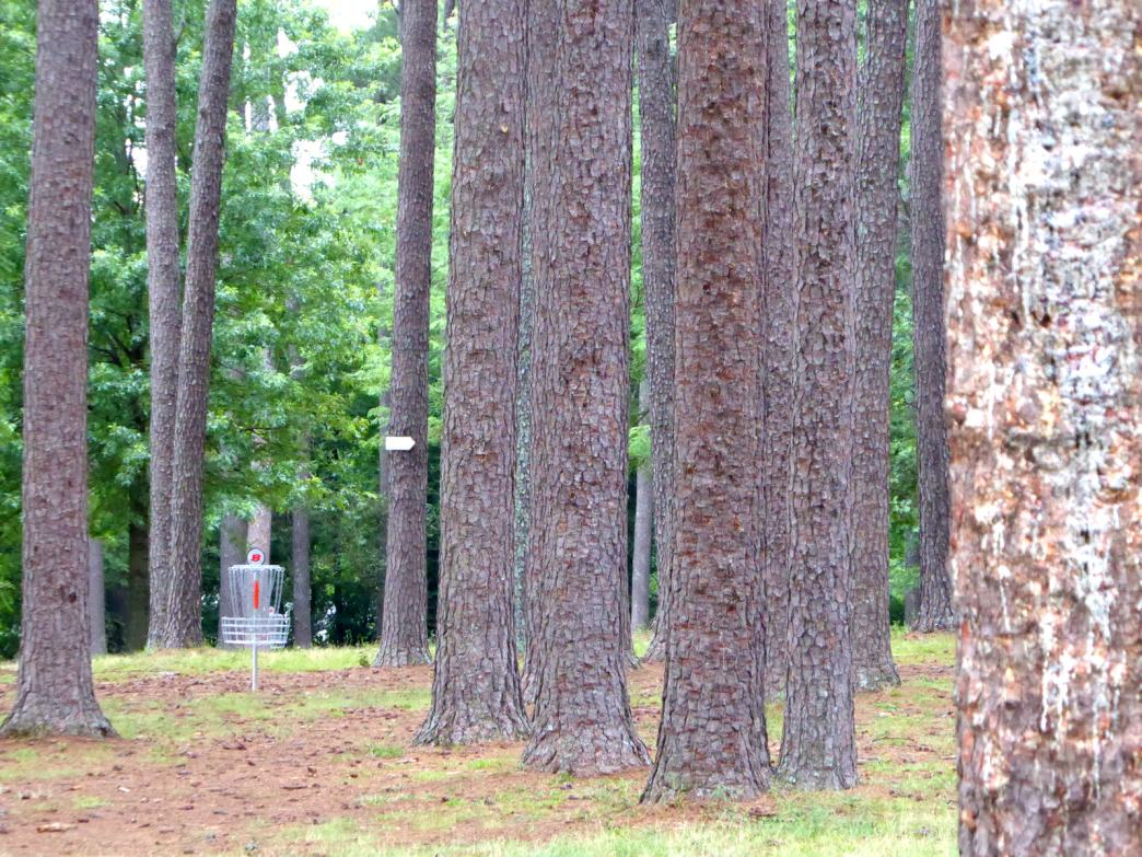 The 40-year-old Brahan Spring course winds through towering pines