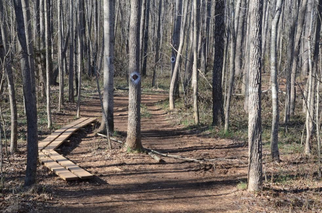 The varied trail of the Swamp Rabbit Ultra.