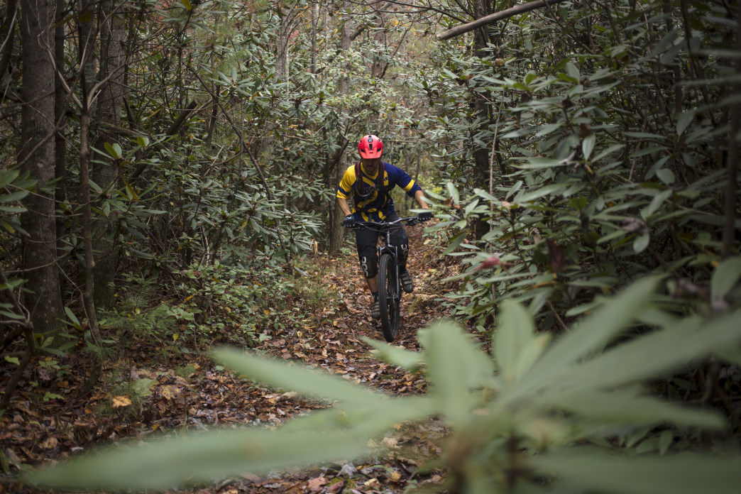 Mountain biking in the Cherokee National Forest's Chilhowee Recreation Area.