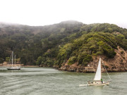 Image for Angel Island