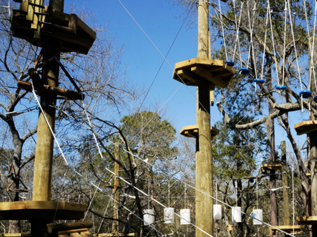 Join Zip Line Hilton Head for an Aerial Adventure
