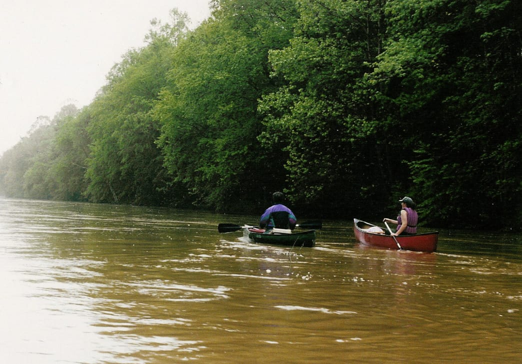 Paddling on the Wolf River is a serene experience through Memphis.