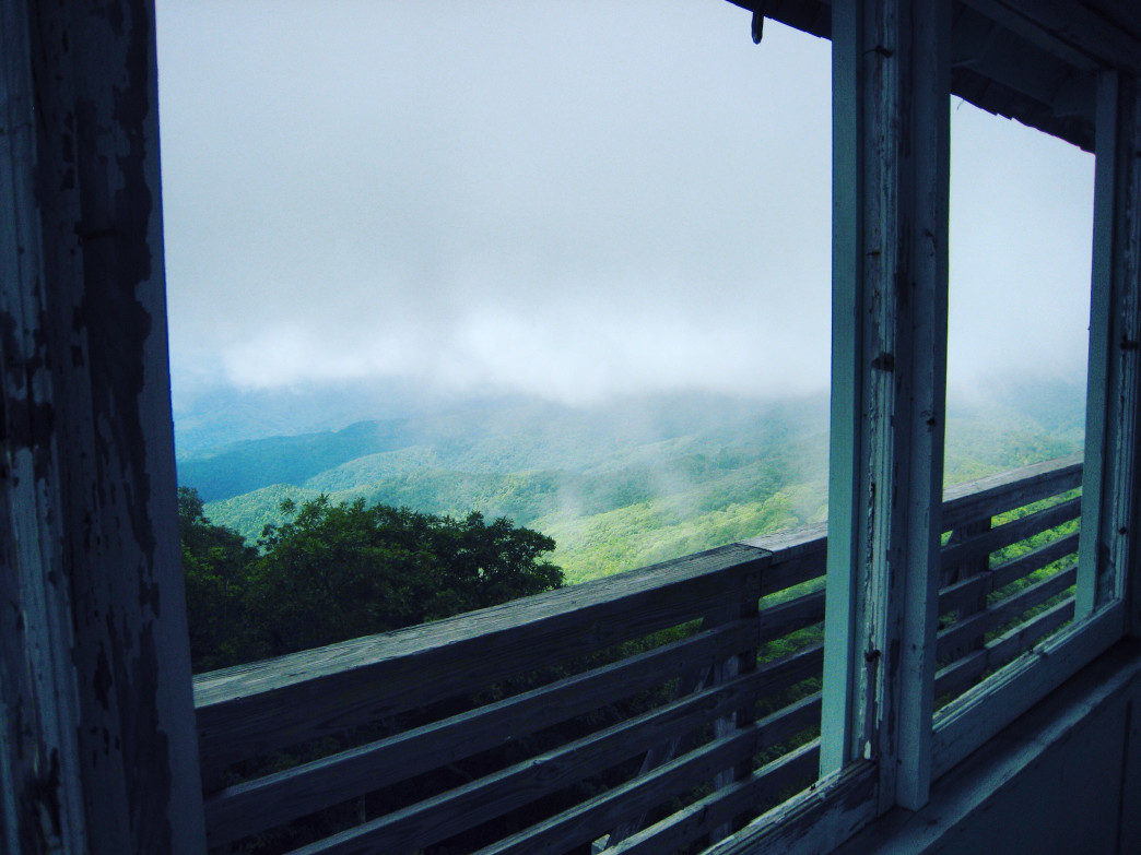 Quite fittingly, the summertime view from Green Knob Fire Tower is one of innumerable shades of green.