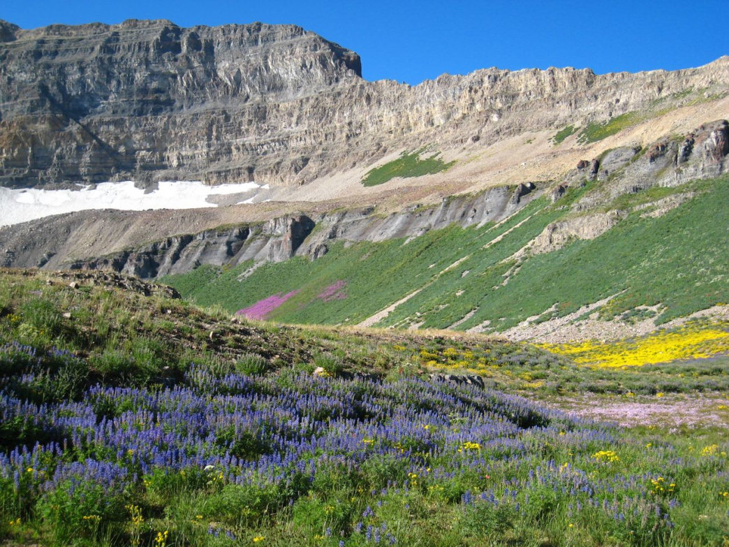 The scenic trail to Mount Timpanogos is popular, but get an early start to complete the 15-mile round trip in a day.