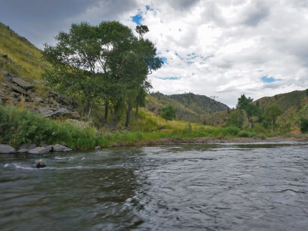 Beginning high in the Rockies and making its way down to the plains of Colorado, the Cache La Poudre River is a Wild & Scenic River with fantastic fishing opportunities.
