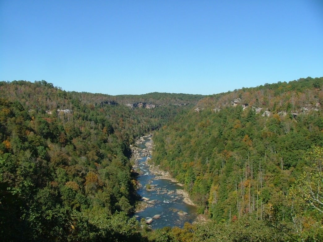 A view of Honey Creek in the Big South Fork National River and Recreation Area.