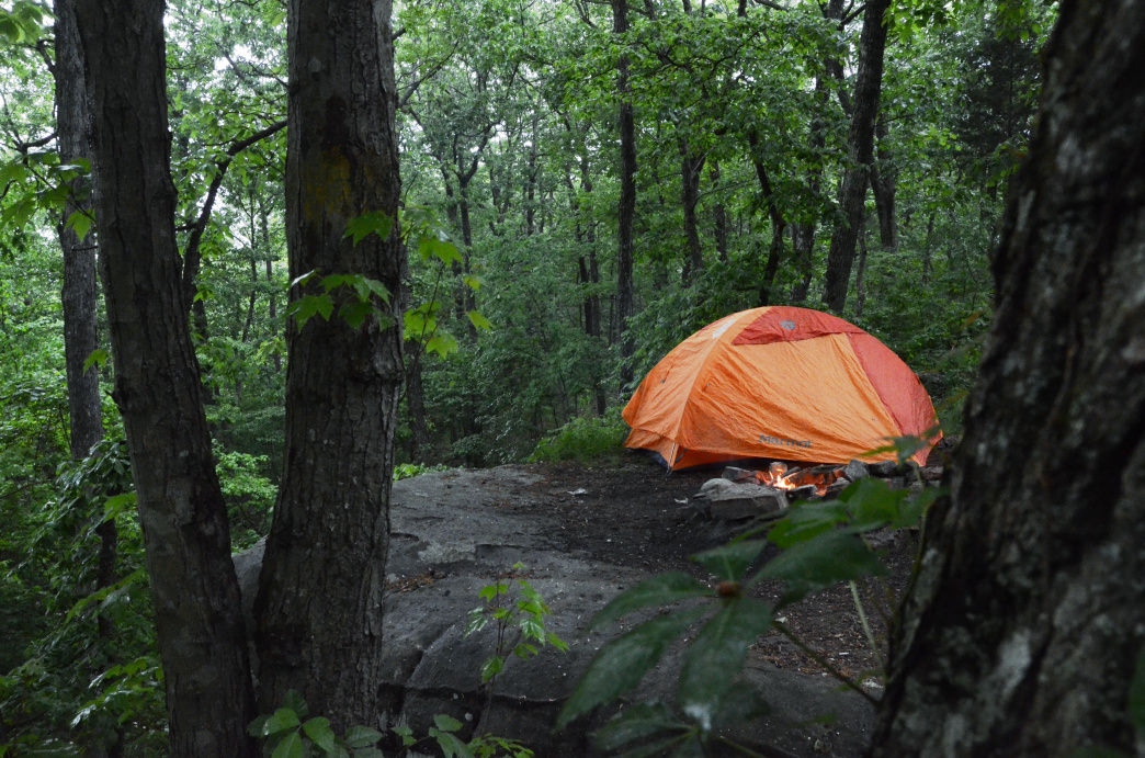 Besides 94 developed campsites, DeSoto State Park has primitive and backcountry sites as well.     Jake Wheeler