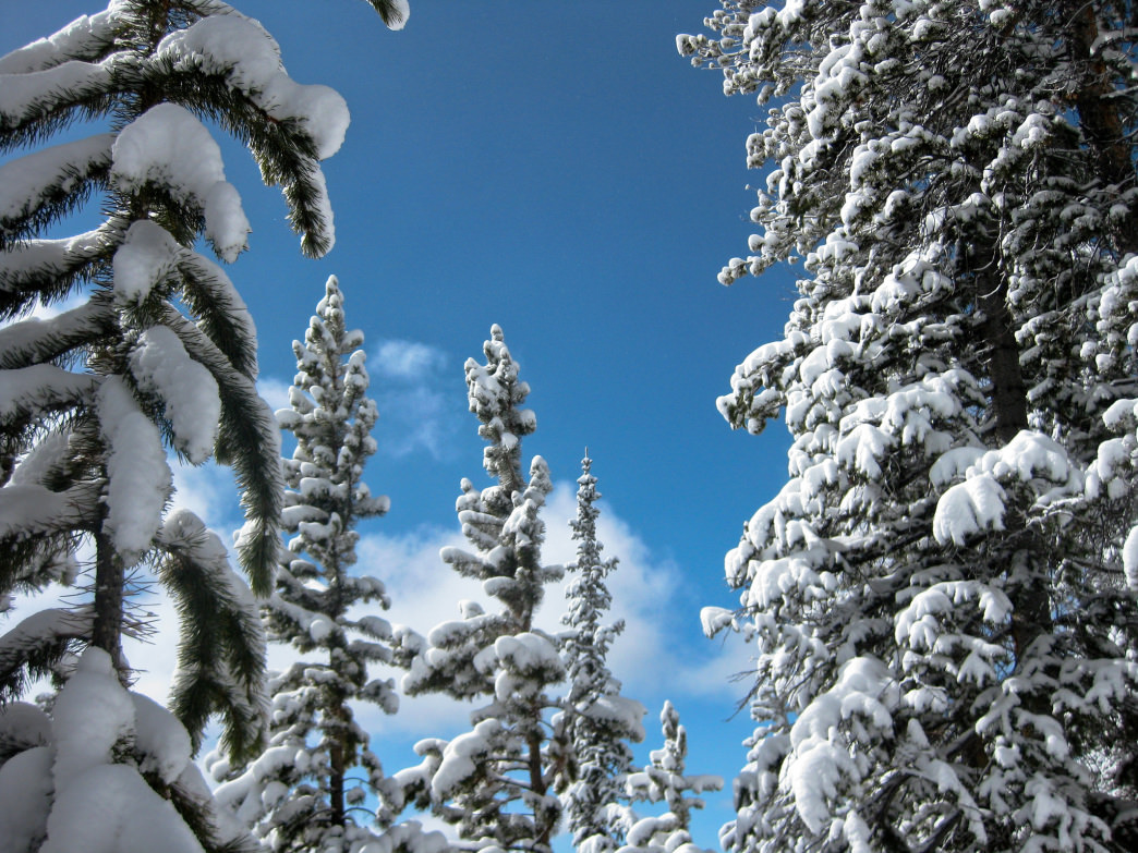Keystone offers a wide variety of activities on the mountain for the whole family.