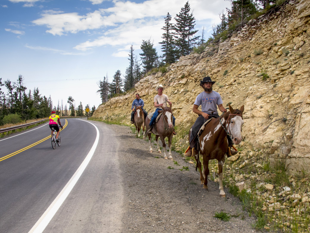 There are all different ways to see the scenery that the Greater Yellowstone Ecosystem has to offer, but from the seat of a bike is by far one of the best.