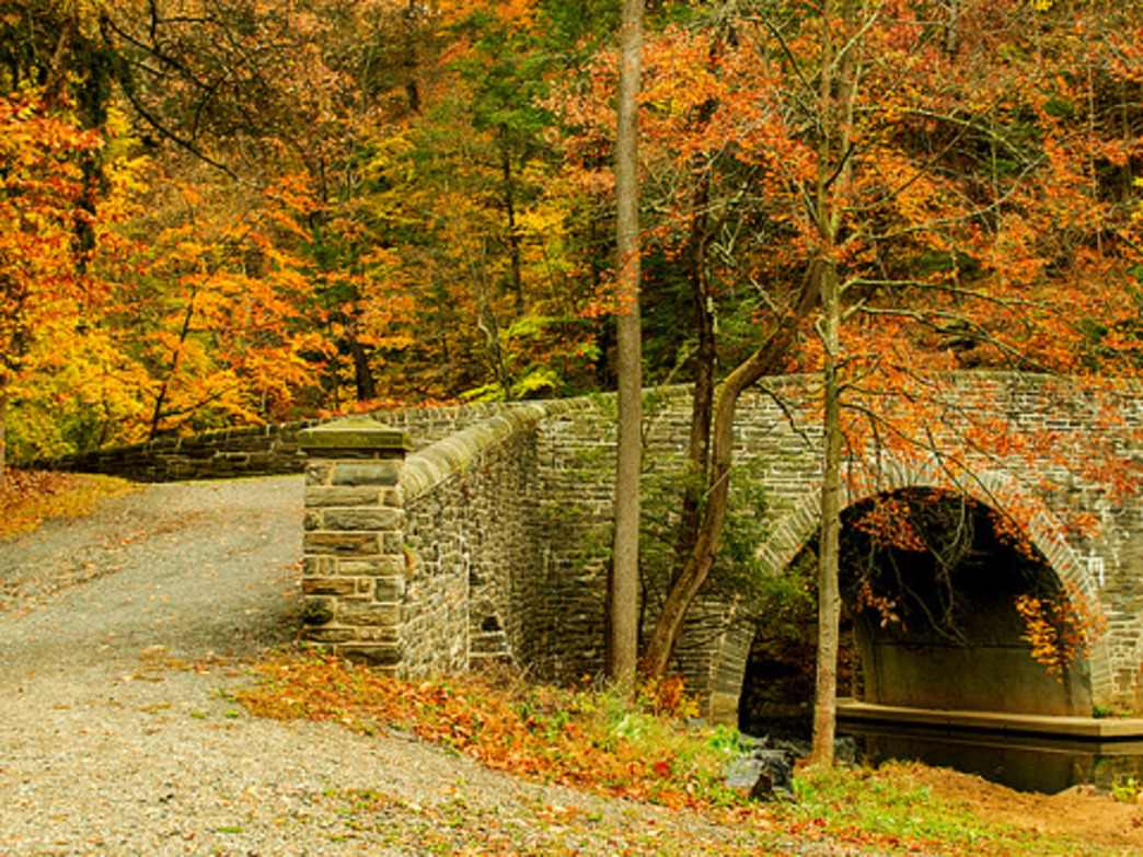 Wissahickon Valley Park offers plenty of year-round hiking options.