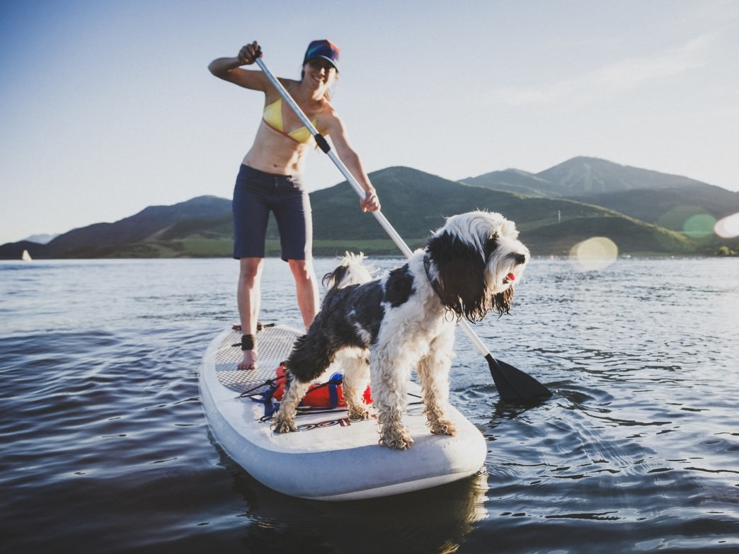 A pup adds extra fun to a SUP on Jordanelle Reservoir.