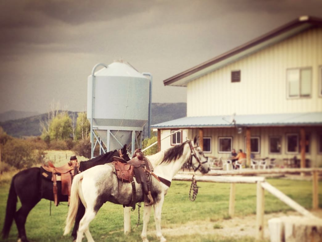 Head over to Grand Teton Brewery and you might even see some horses at the pub.