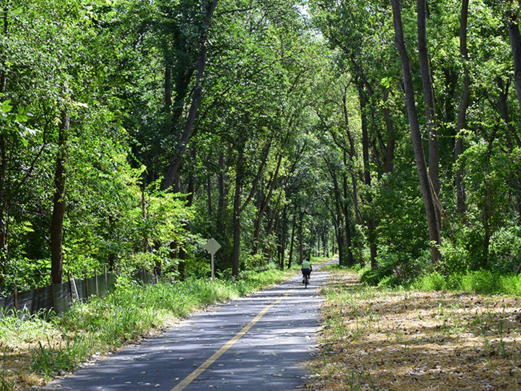 The tree-lined section of the Cal-Sag Trail.