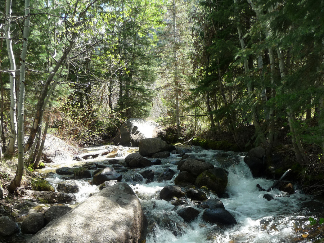 Bell's Canyon invites summer hikers with its naturally air-conditioned gully and rushing stream.
