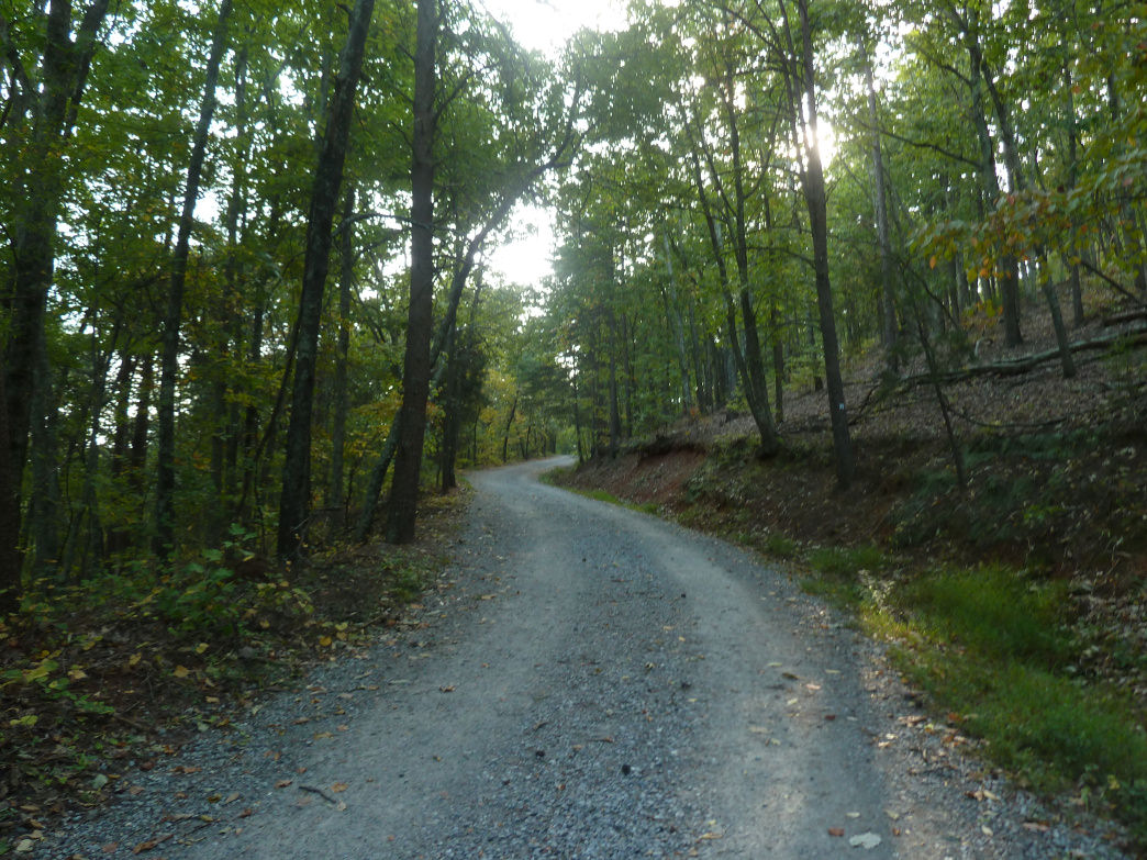 The Tower Trail served as a forested mountain road in Max