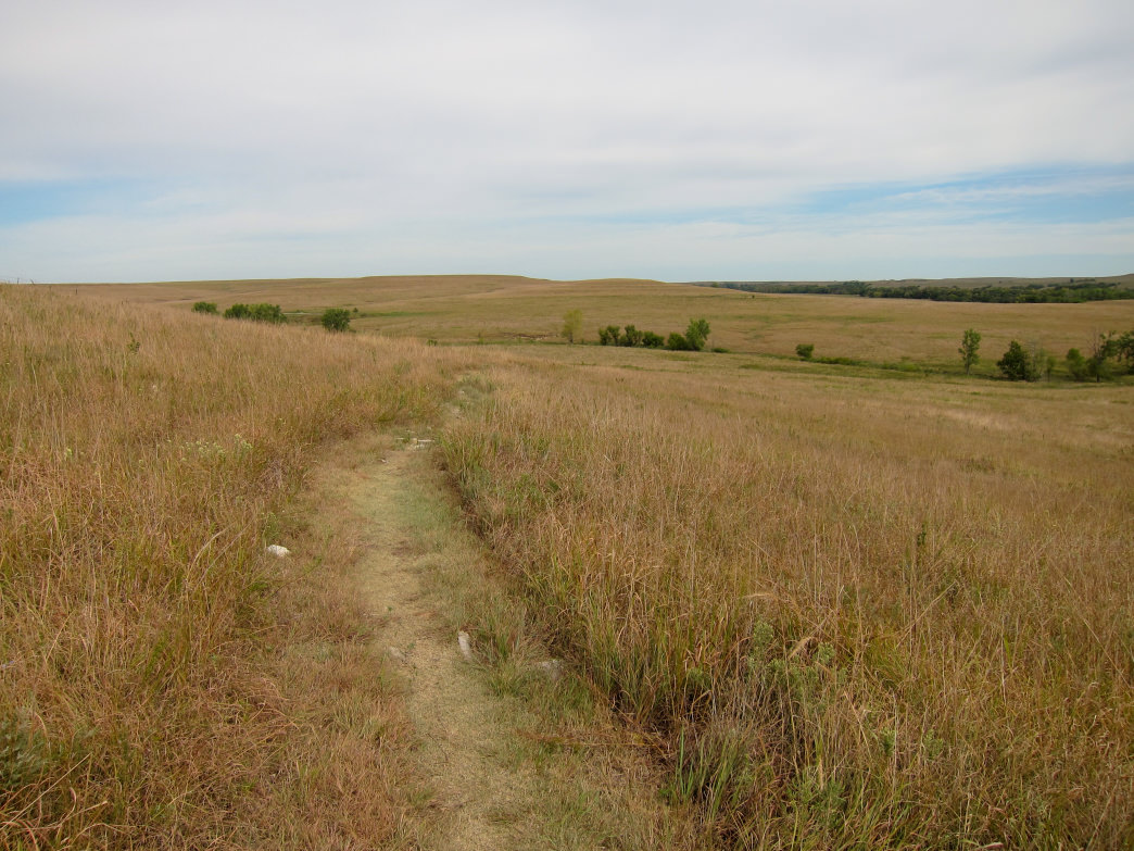 Tallgrass Prairie National Preserve, Strong City, Kan