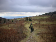 Image for Grayson Highlands State Park
