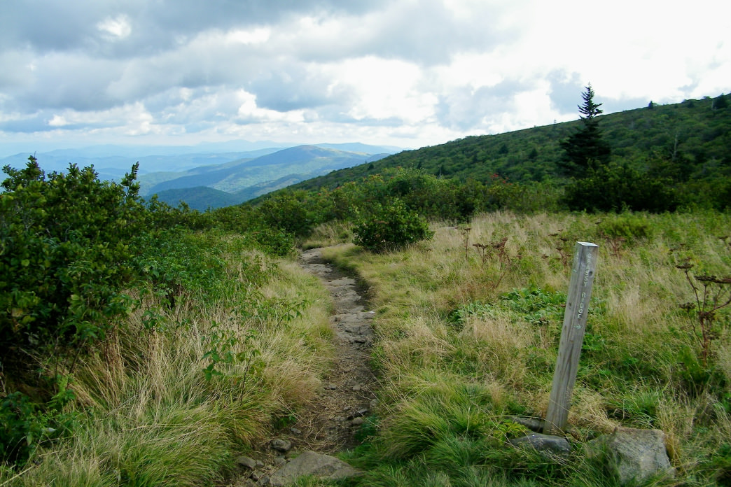 Asheville-area trails include moderate, non-technical climbs on singletrack.
