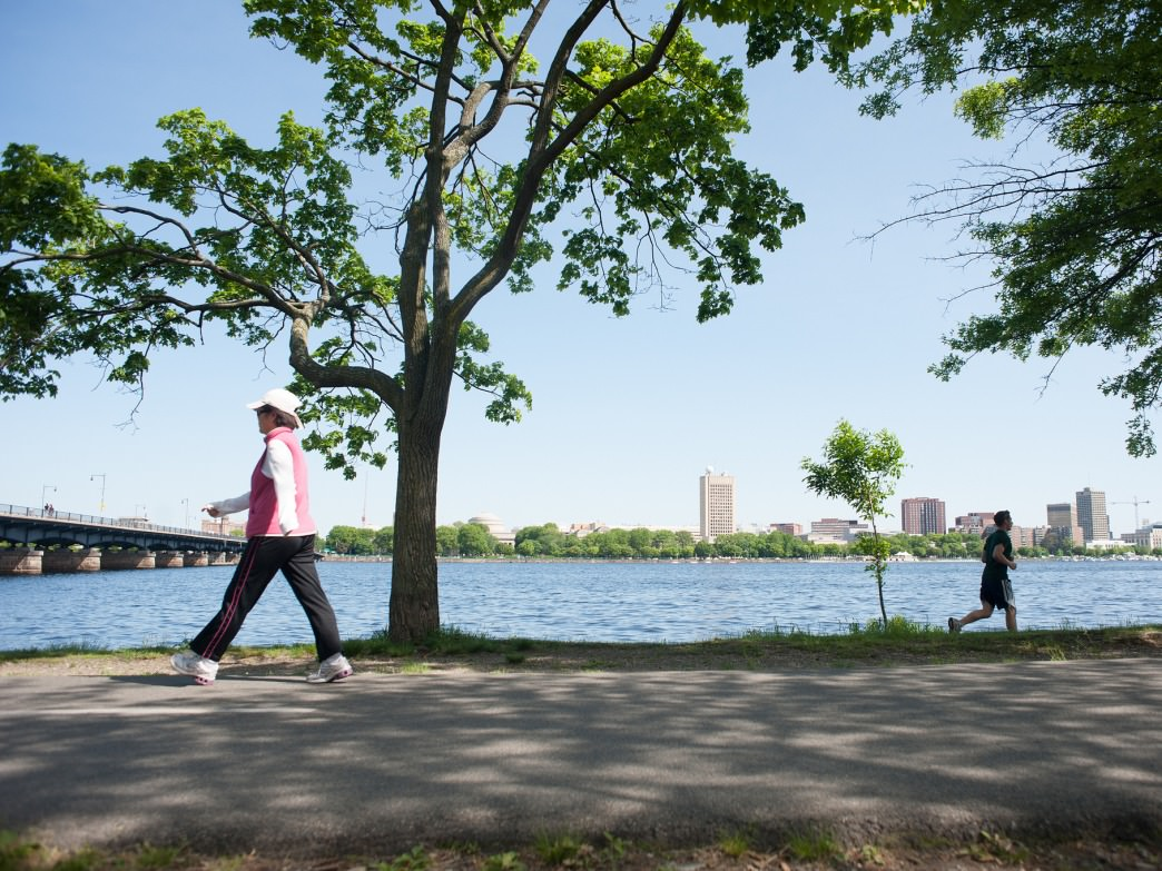 Running, walking, and biking along the Charles River are popular activities