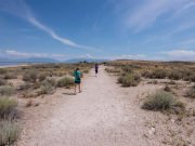Image for Buffalo Point Trail on Antelope Island
