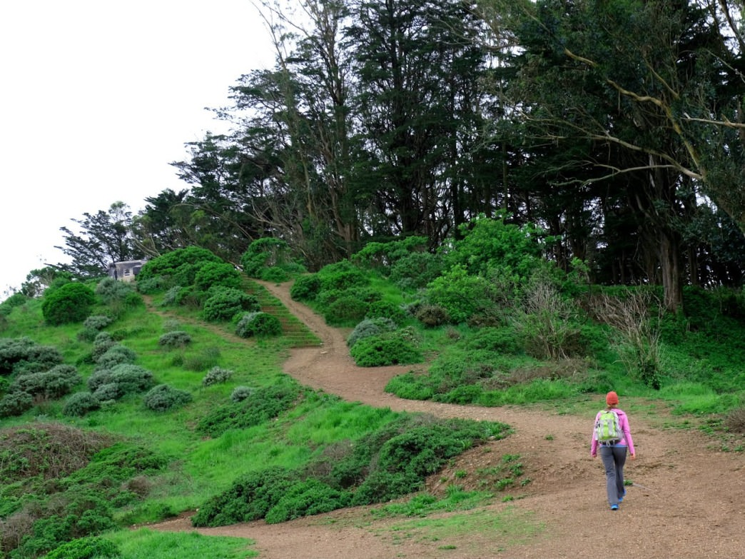 At 938 feet, Mount Davidson is the highest point in San Francisco.