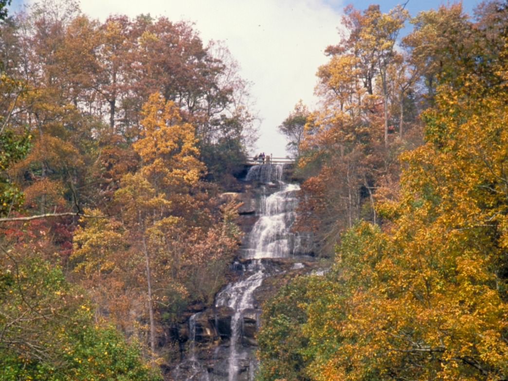 Enjoy the beautiful views at Amicalola Falls.