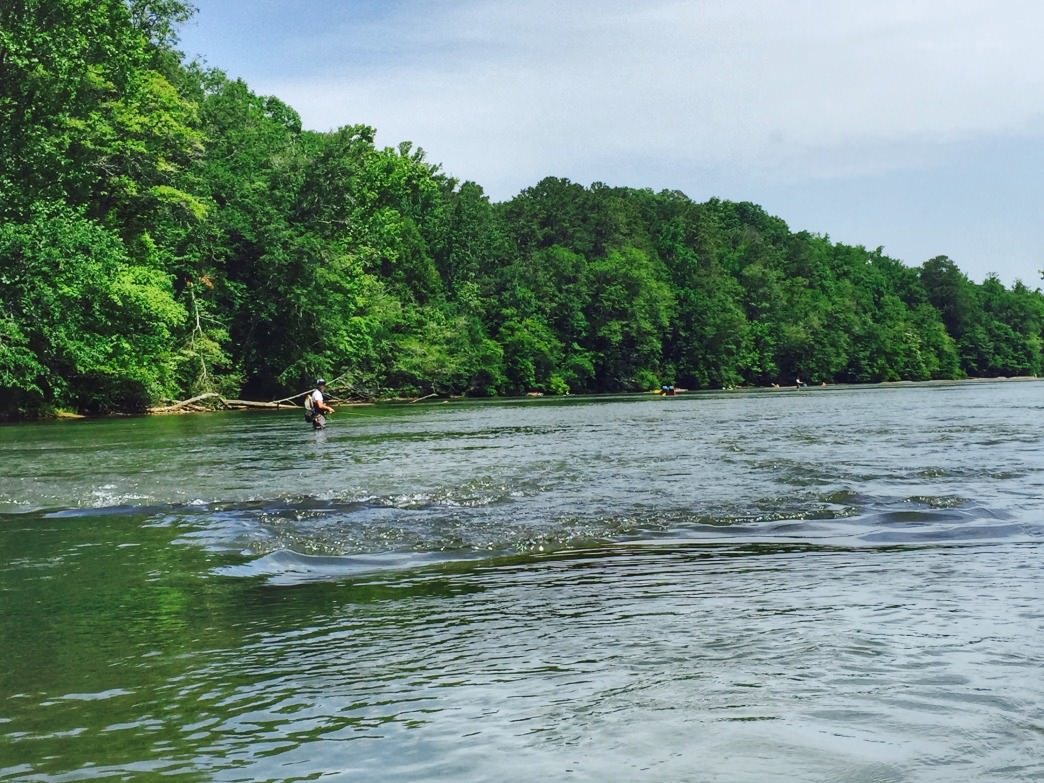 A mellow paddle along the Chattahoochee is relaxing and convenient from downtown.