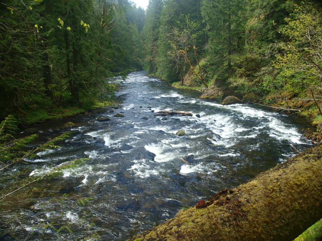 The Salmon River Trail - Backpacking/Camping