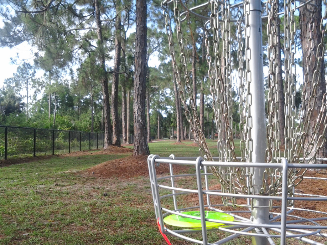 "The ""hole"" in disc golf is a basket, where the disc must land."