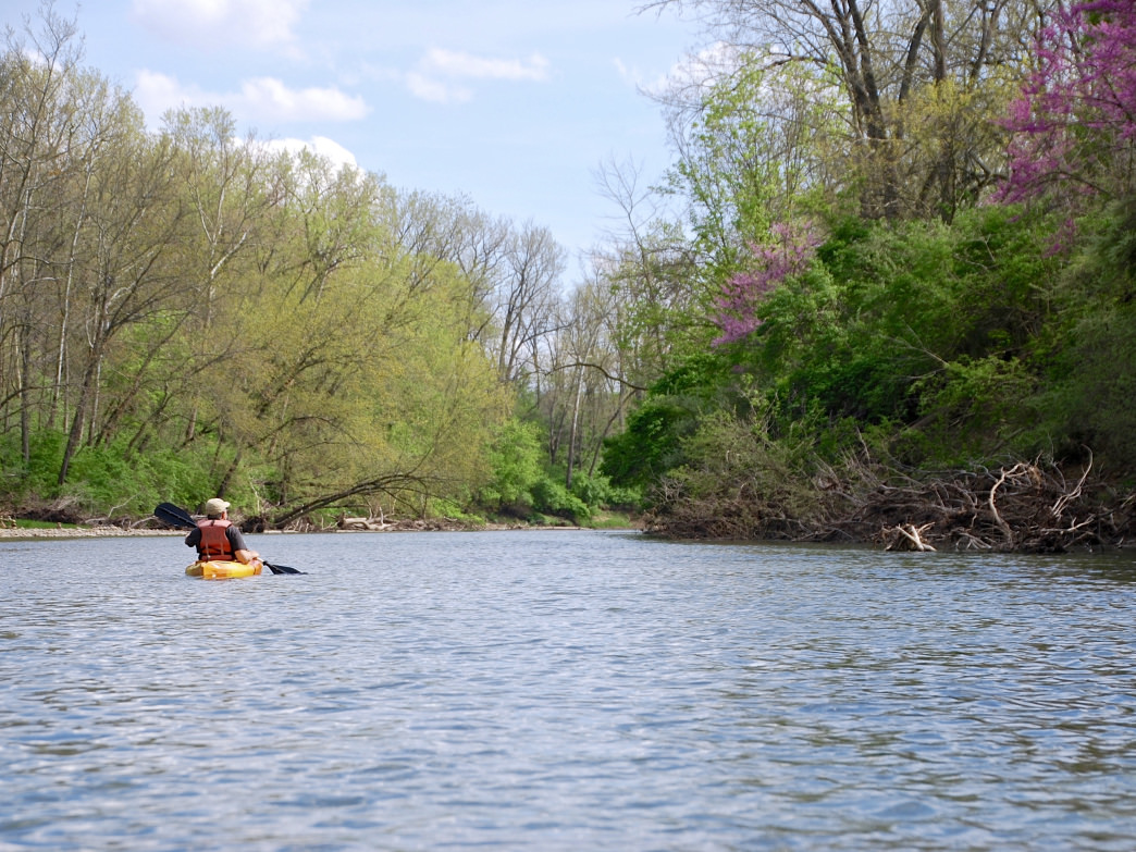 Springtime paddling along the Middle Fork of the Vermilion River.