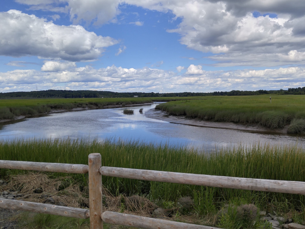 Scarborough Marsh is Maine's largest salt marsh.
