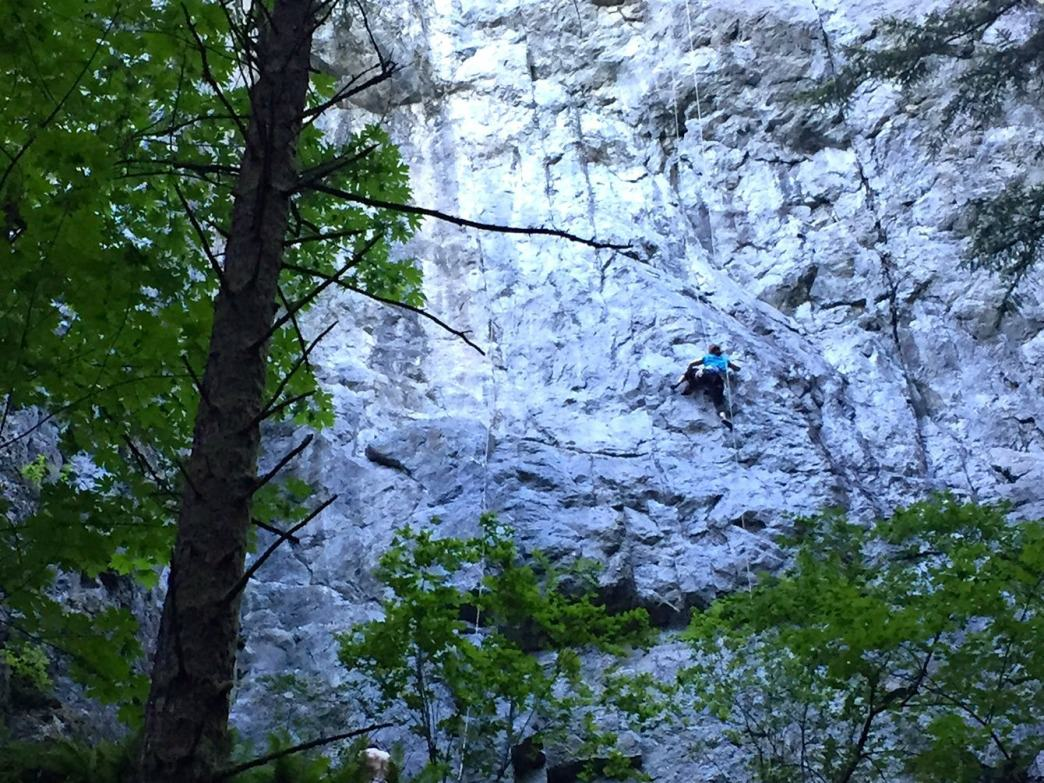 A climber works out the moves at Exit 32's World Wall.