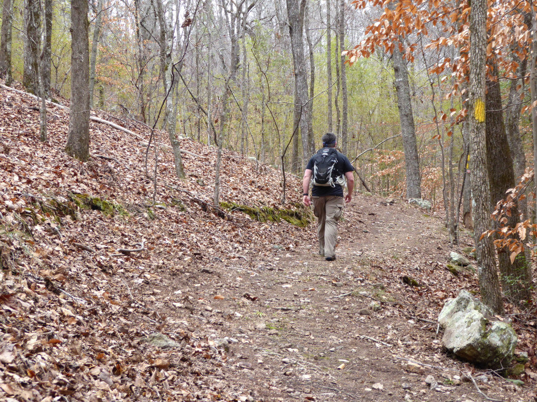 The new Flagg Mountain trail system explores a rugged hardwood forest.     Marcus Woolf