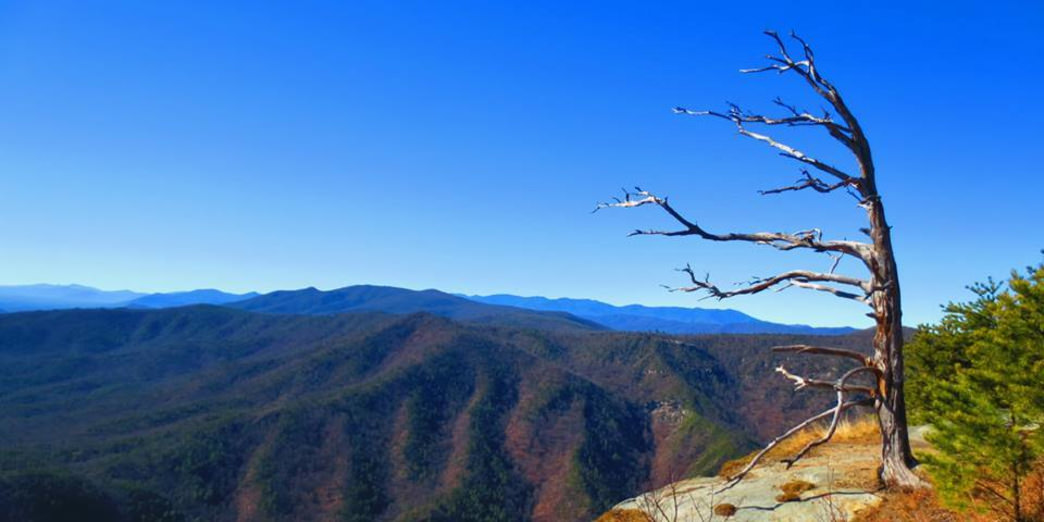 An app can help you locate specific peaks at Linville Gorge.