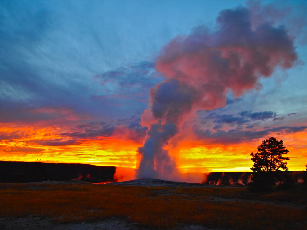 Old Faithful at sunset.